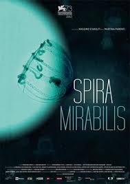 Film Spira Mirabilis
