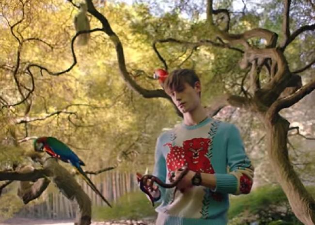 La magia dei giardini di ninfa nel nuovo film promozionale - I giardini di alice latina lt ...