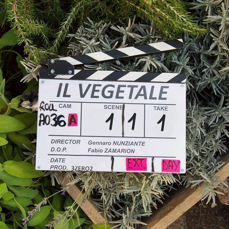 il-vegetale-fabio-rovazzi-gennaro-nunziante-film-disney-01